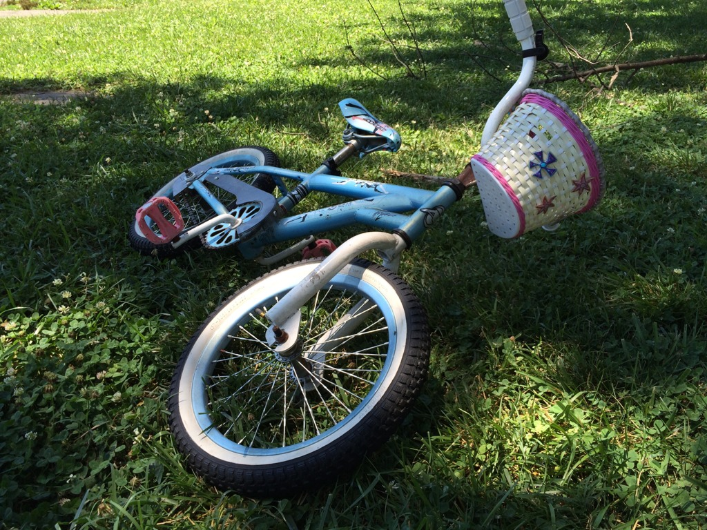 Riding bikes and flying kites.